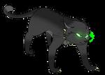 Ravid   Warrior Cats