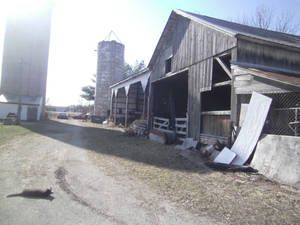hay shed during the day