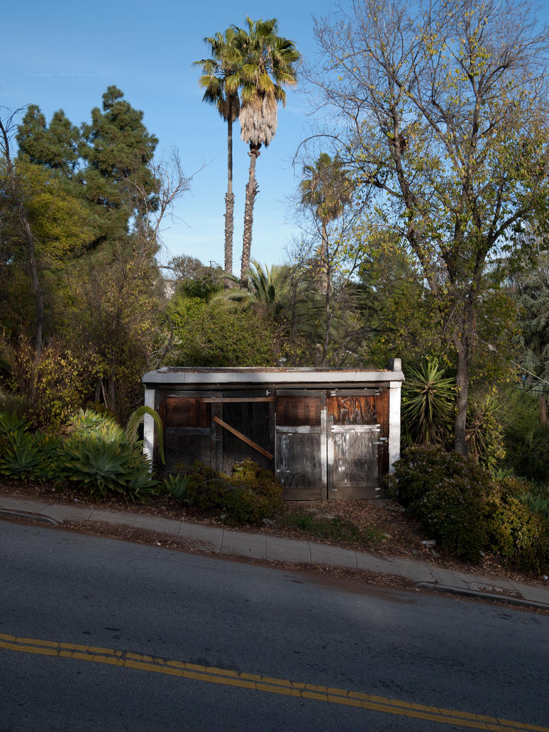 Garage and Palms. by makepictures
