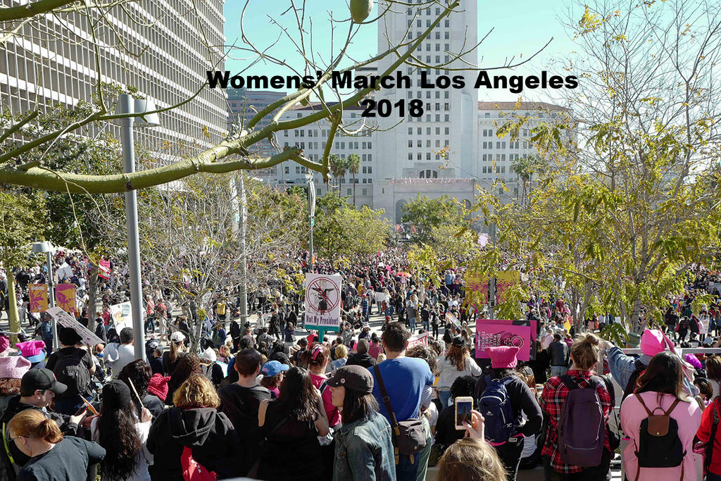 2018 women's march LA-Title by makepictures