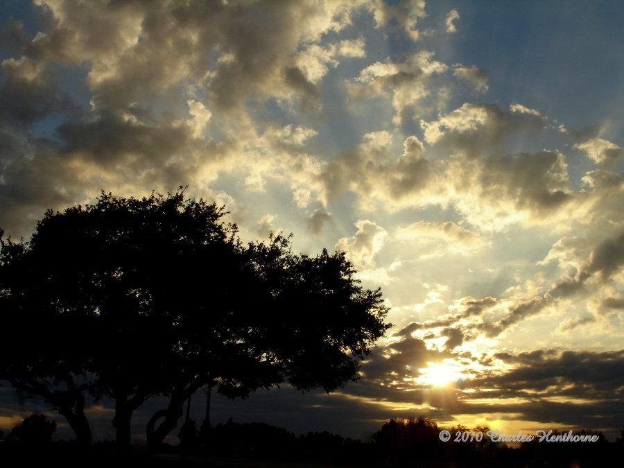 Blazing Sun By Mudhead1-d32y538 by mudhead1
