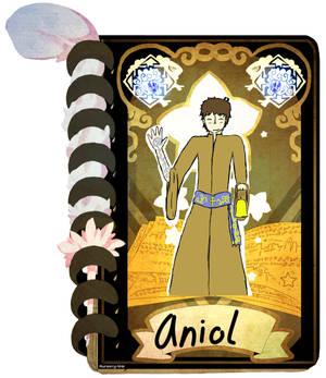 NW- Aniol  Re-vised app