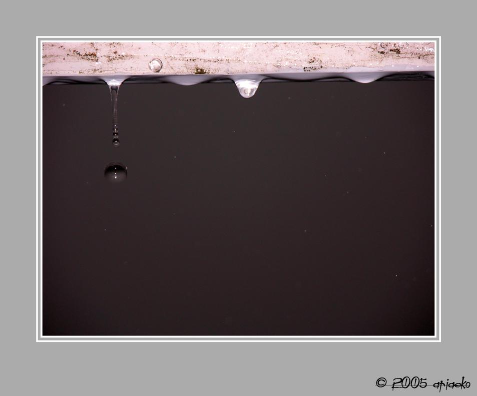 condensation-v2 by ariaeko