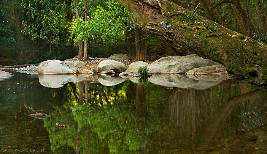 Swimming Hole by DrewHopper