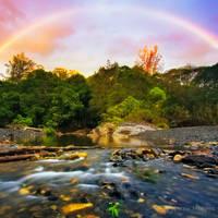 Gold Under The Rainbow