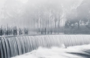 Misty Embankment