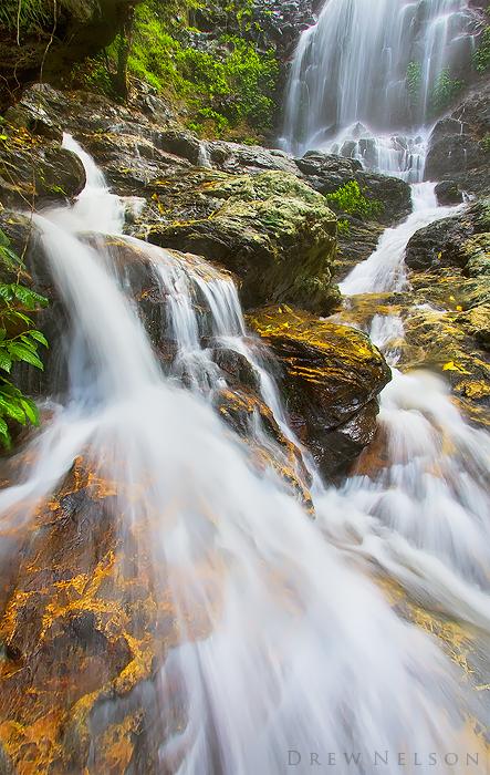 Tristania Cascades by DrewHopper