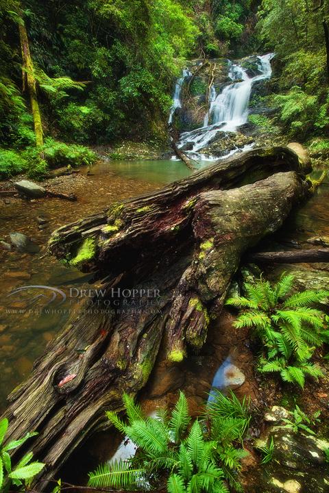 Casuarina Falls by DrewHopper