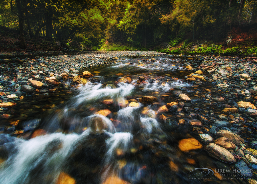 Placid Surrounds by DrewHopper