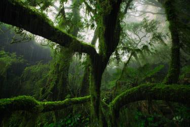 Mist Shower by DrewHopper