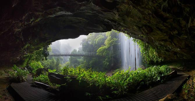 Nature's Window