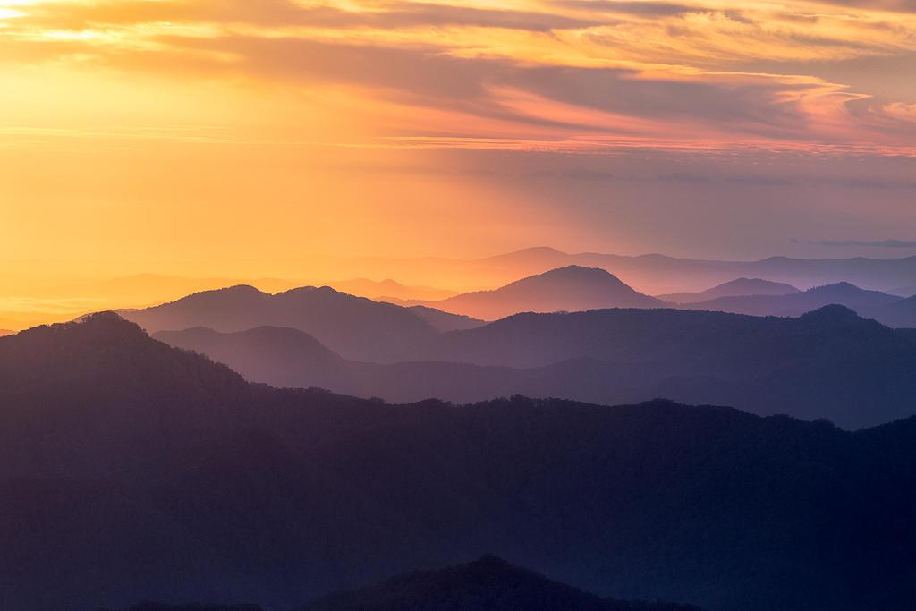 Golden Morning by DrewHopper