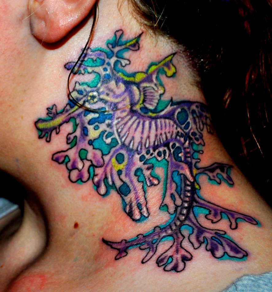 Leafy sea dragon tattoo by blackdarkness on deviantart for Sea dragon tattoo