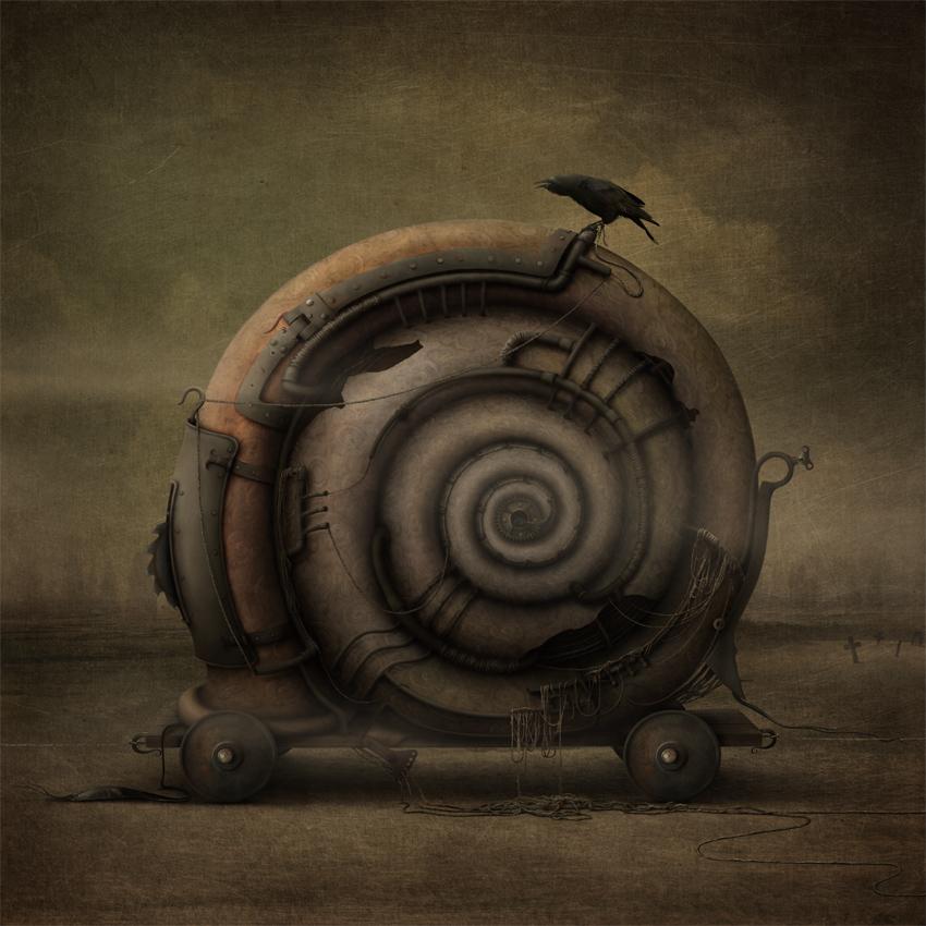 Snail by AnnMei