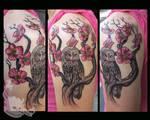 Cherry Blossom Owl