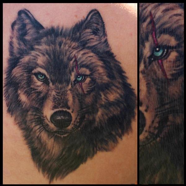 Wolfwithscar11by11 by JakubNadrowski