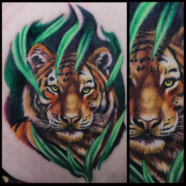 Tiger11by11 by JakubNadrowski