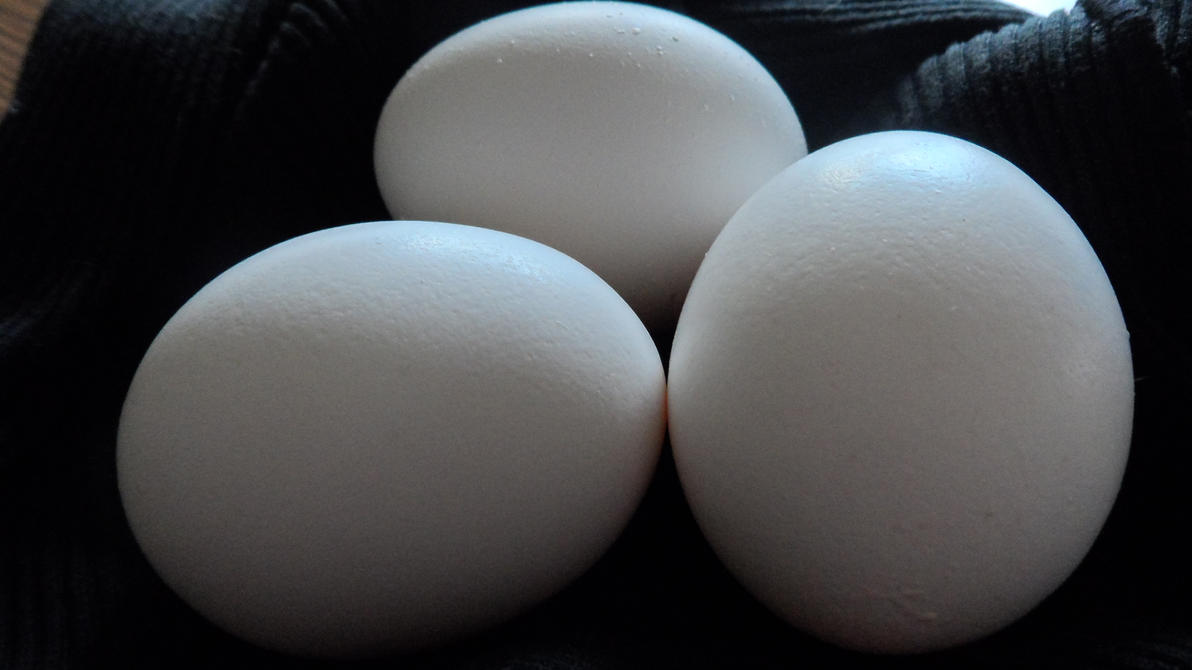 Eggs by GothicRavenMidnight