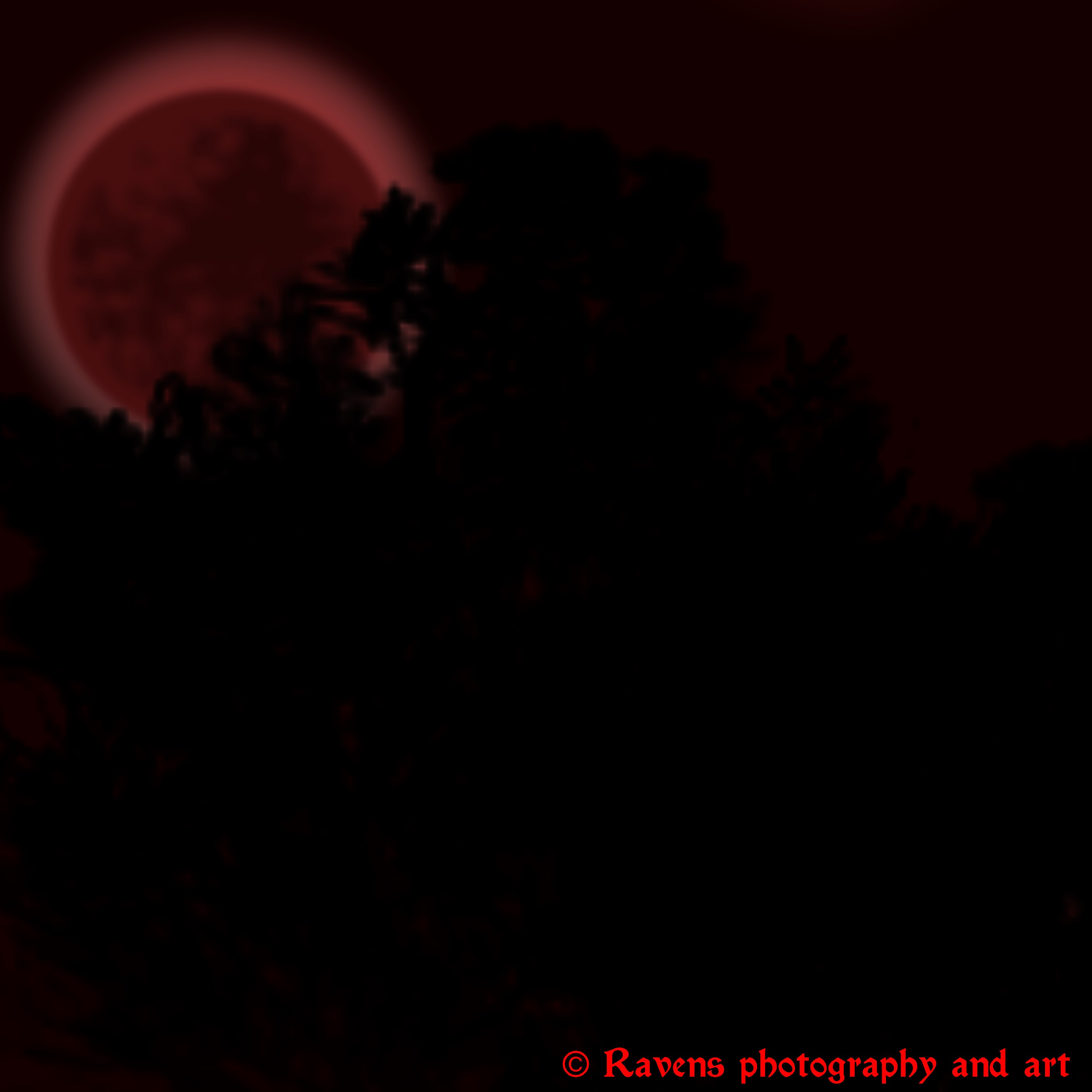 Red moon behind trees by GothicRavenMidnight