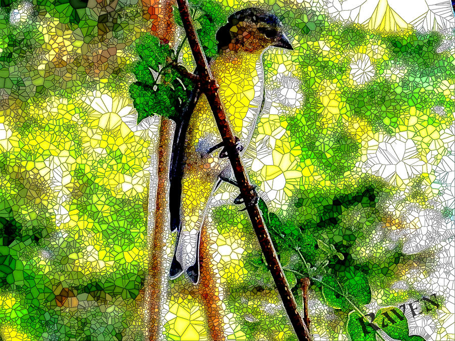 Stainglass finch by GothicRavenMidnight