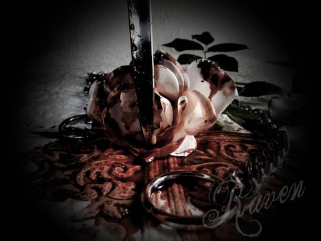 Killing Purity