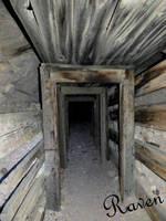 Ghost Town Nevada Mine by GothicRavenMidnight