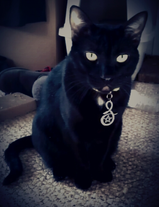 Loki's new pendant by GothicRavenMidnight