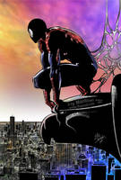 Spider-Man by henflay