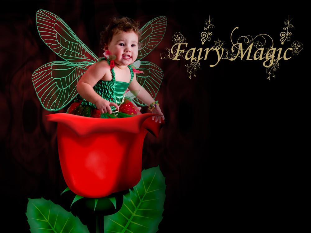Rose Fairy by BFG