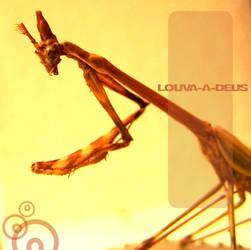 Louva-a-Deus by Kkymerah