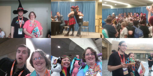 Pictures I took of people I met at BronyCon 2017! by Ripple-Effect-MLP