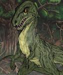 Coloured Raptor