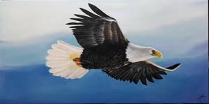 flying eagle by Jai-artes