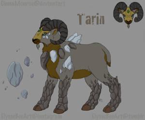 Tarin of Stone