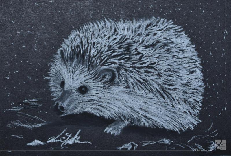 Hedgehog by Vivacious-Designs