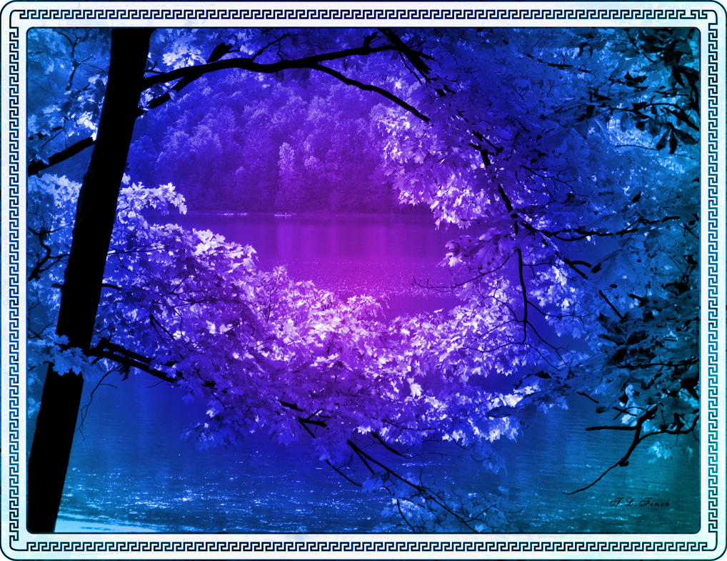 Lavender and Blue by TLFinch