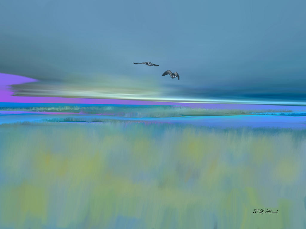 Back To The Marsh by TLFinch