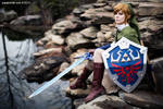 Katsucon 2013: Skyward Sword Link