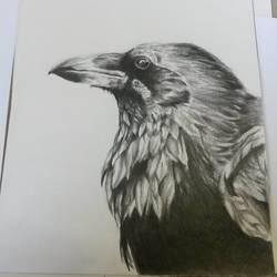 Pencil Raven by Tibbles4684