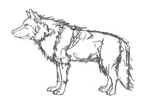 Wolf - Day 2