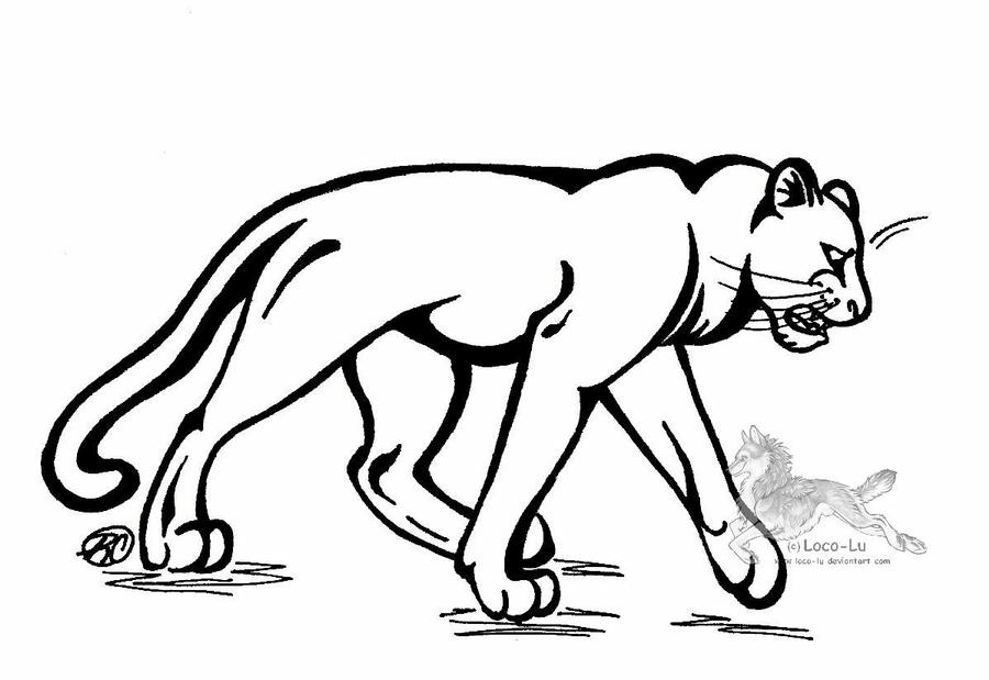 panther drawing outline - photo #12