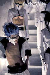 grimmjow_10 by kaname-lovers