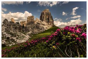 Cinque Torri in bloom by JamesRushforth