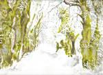 winters road by danuta50