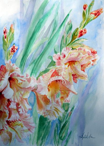 gladioli by danuta50