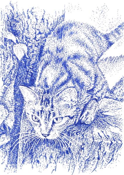 Kitti by danuta50
