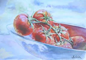 Tomatoes by danuta50
