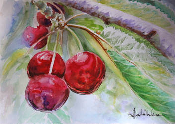Cherries by danuta50