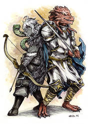 DnD character card: drow and dragonborn