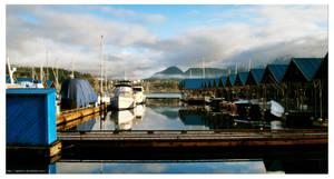 Morning at the Docks